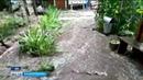 Как спастись от дождя Жители частного сектора в Уфе страдают от наводнений