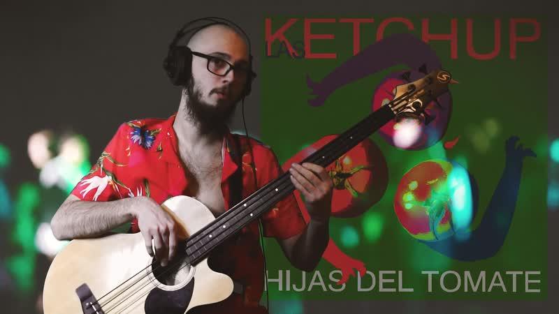 Las Ketchup — Aserejé (bass cover)