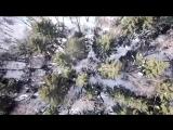Мы любим наш лес - We Love Forest - Фенино, Серпуховский район, МО хотят вырубить под свалку