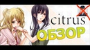 Обзор аниме Цитрус ▏ Hiiki Omori был не прав!