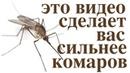 Волшебная защита от комаров Не тратьте деньги на химию