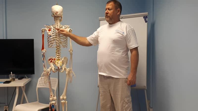 Основные принципы корреции сколиоза. Андрей Яковлев