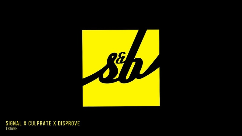 Signal x Culprate x Disprove - Triage