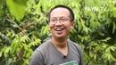 เกษตรไทยไอดอล | EP.143 ตอน สวนโกโก้ที่ปัว | 12 ต.ค.61