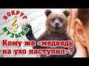 Кому же медведь на ухо наступил Мысли о музыкальном слухе
