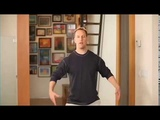 Qi Gong 10 min Evening Exercise by Lee Holden