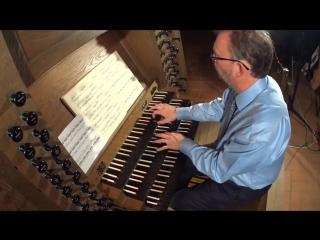 988 J. S. Bach - Goldberg-Variationen, BWV 988 - Carsten Klomp, organ