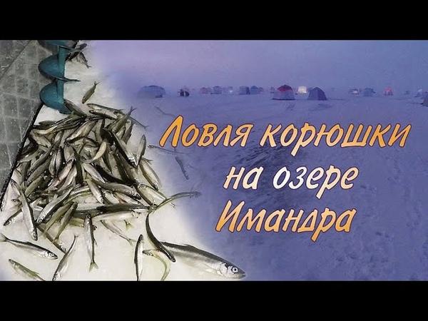 Ловля корюшки на озере Имандра / Smelt fishing on lake Imandra
