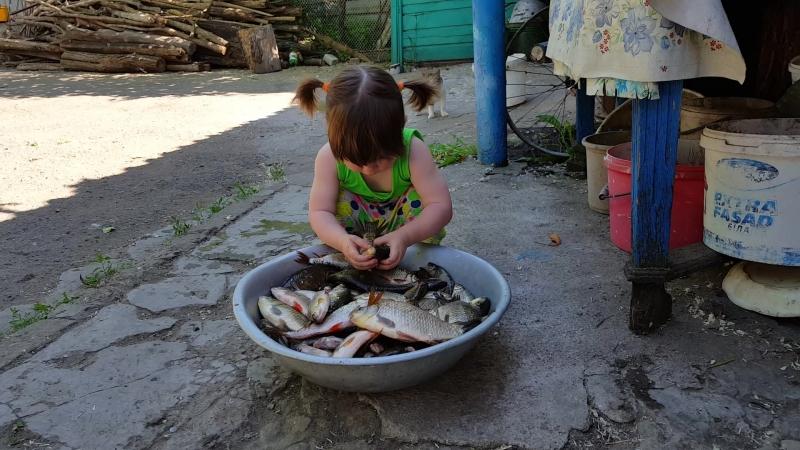 Леся і золота рибка