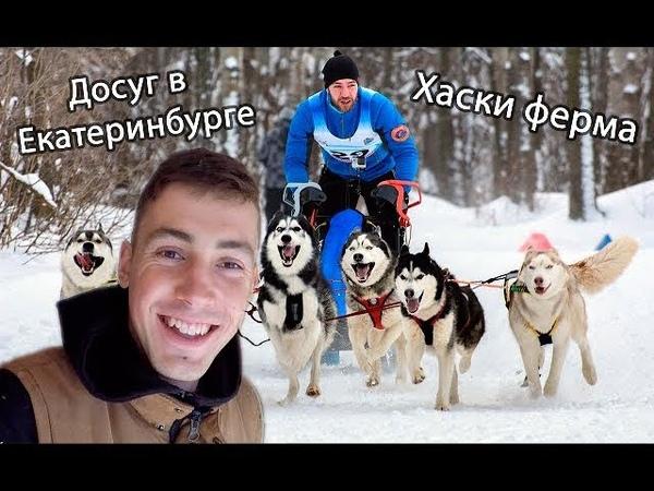 Хаски ферма Эльбрус Екатеринбург . Питомник ездовых собак ! Интервью у хаски .