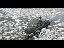 В Североморск вернулся отряд во главе с большим противолодочным кораблем «Вице-адмирал Кулаков»