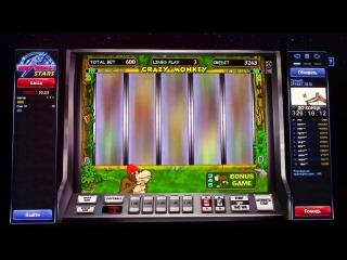 Crazy Monkey (ОБЕЗЬЯНКИ) как выиграть в казино вулкан. Интернет казино онлайн