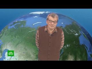 Утренний прогноз погоды на 21 сентября