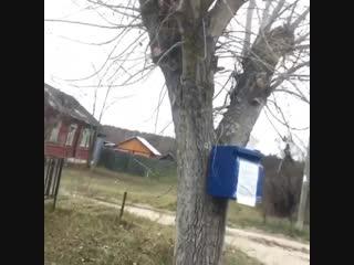 Немного о жизни в деревне