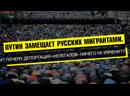 ПУТИН ЗАМЕЩАЕТ РУССКИЙ НАРОД МИГРАНТАМИ ПОЧЕМУ ДЕПОРТАЦИЯ НЕЛЕГАЛОВ НИЧЕГО НЕ ИЗМЕНИТ
