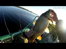 Рыбалка в сентябре, ловля на спиннинг с лодки сазан, карась, язь