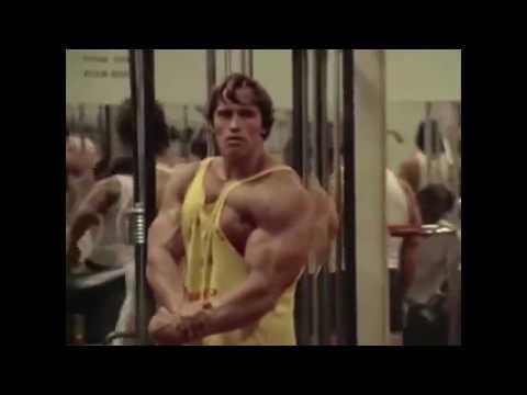 Тренировка, Мотивация. Вин Дизеля. Дуэйн Джонсон,Скола.Arnold Schwarzenegger,Арно́льд Шварцене́ггер