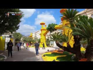【k】france travel-menton _bioves garden_lemon festival_côte dazur_french riviera