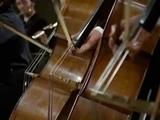 Bach, Matth