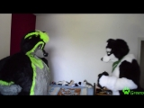 Today is the ultimate fight between @Tay_Blackpaw and me! - - Who will be the new winner