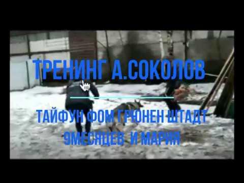 Тайфун 9 м и Маша тренинг с А Соколовым
