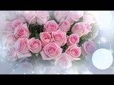 Гаврилюк Олег и Даяна. Белые,желтые красные розы....