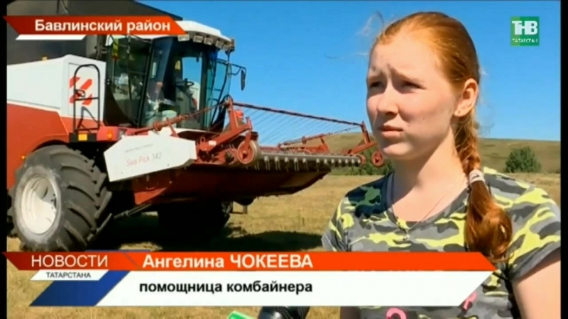 В Бавлинском районе комбайном управляет 14-летняя Ангелина Чокеева