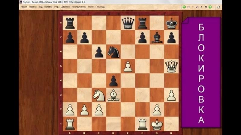 ОРУЖИЕ сильных шахматистов.Выпуск4. Школа шахмат d4-d5