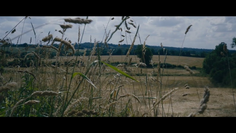 Max Richter | Peaceful Music Playlist on Apple Music