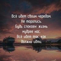 Анкета Владимир Кононов
