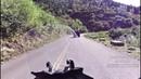 😬 Встреча мотоциклистов с Медведями 😰!