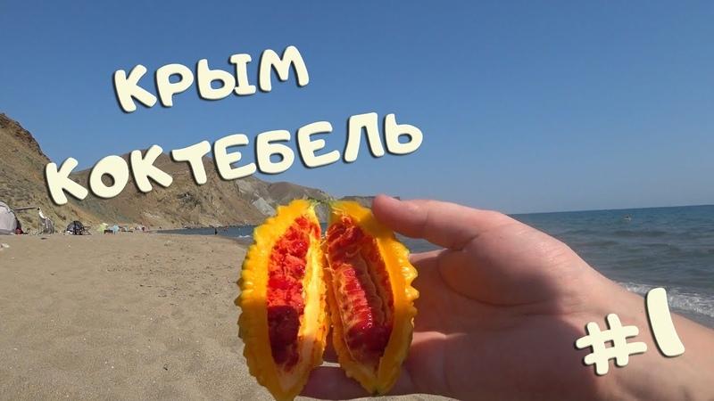 Крым , Коктебель, Тихая бухта, Хамелеон. 1