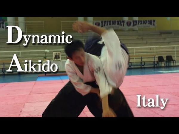 合気道 ダイナミックな自由技 Dynami Aikido in Italy