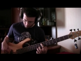 The Cardigans - My Favourite Game (Bass Cover)