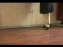 Tango tutorial for lady steps- Forward Ocho