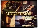 Audiofusion do Brasil / Live 2010-2015