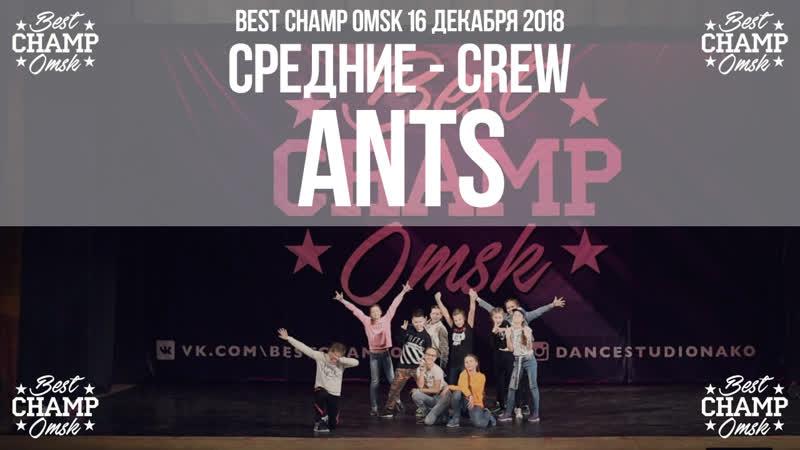 ANTS   Средние Crew   Participant   Best Champ Omsk 16 December 2018