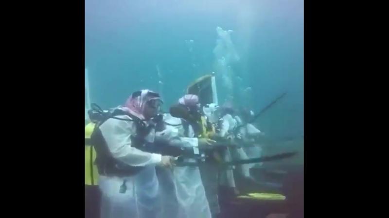 Кто проживает на дне океана