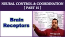 Neural Control and Coordination for NEET | Part 15 | Brain Receptors