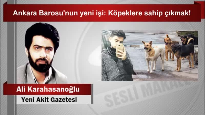 Ali Karahasanoğlu Ankara Barosu'nun yeni işi Köpeklere sahip çıkmak