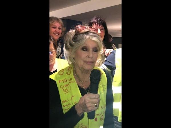 Brigitte Bardot avec les gilets jaunes Ne lâchez rien, je vous soutiens à fond