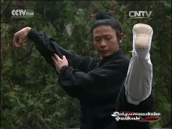 Китайские боевые искусства: Удан кунфу. Возникновение школы Нэй цзя.