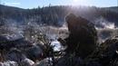 Сибирская оленина - Выжить любой ценой