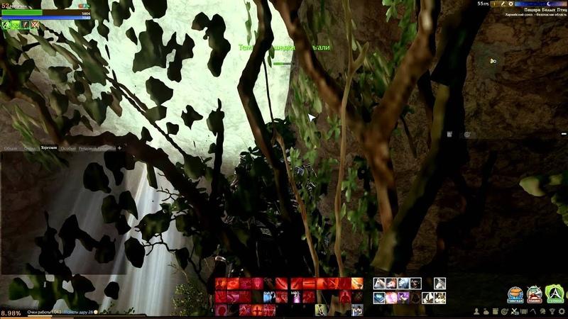 Archeage / Картограф Махадеби / Найти дерево в пещере Белых птиц