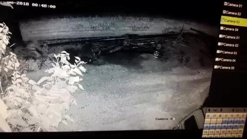 Одни джихадисты расстреляли другого ваххабита😱😂 Россия Происшествия криминал