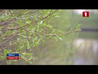 В Минске 1 мая побит температурный рекорд 1977 года