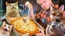 Ямм Пицца ОНО ТЯНЕТСЯ Славный Обзор
