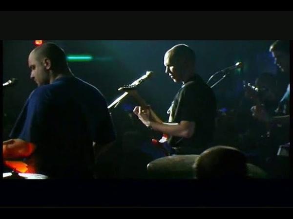 Коловрат-Скинхед