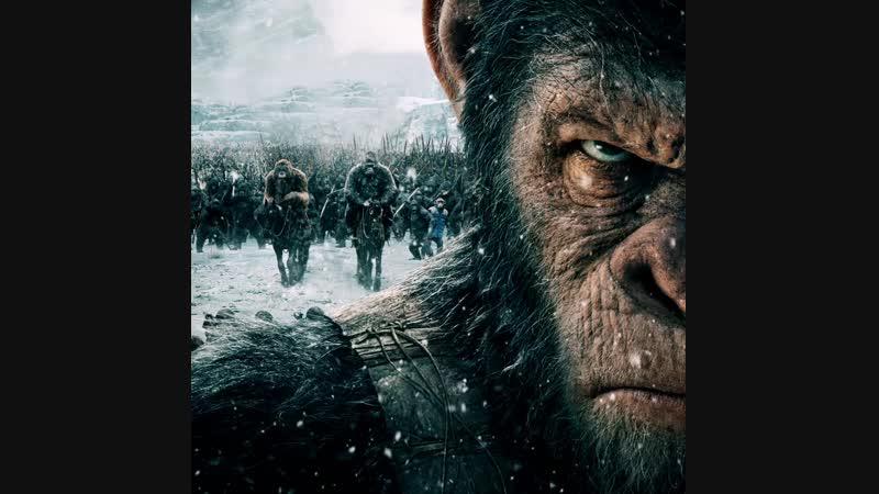 Планета обезьян Война 28 октября на РЕН ТВ