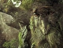 Ученые открыли чужую цивилизацию у нас под носом.Зеленые колонизаторы планеты.Обманутые наукой